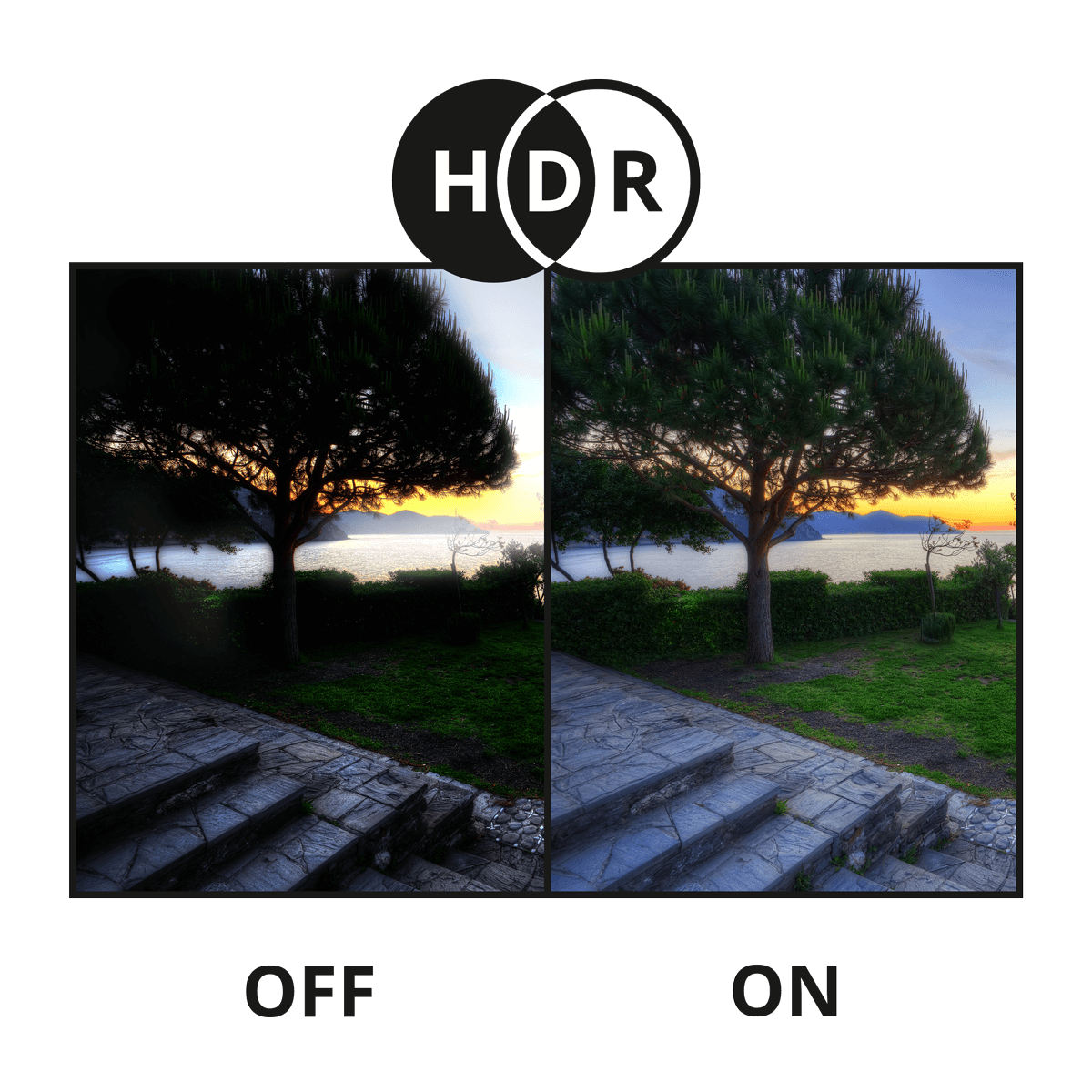 HDR nocturnal security camera